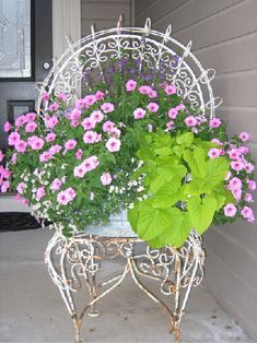 Rescued Chair for pretty flowers.