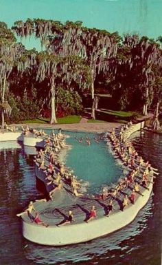 Florida pool at Cypress Gardens