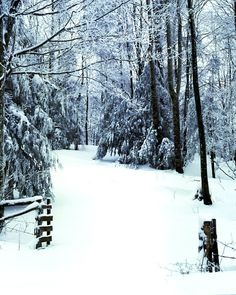 Winter road near Banner Elk, NC
