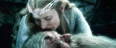 """""""Lo Hobbit: la batta"""