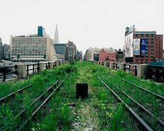 When the High Line was still an abandoned elevated railway. Courtesy of photographer Joel Sternfeld.