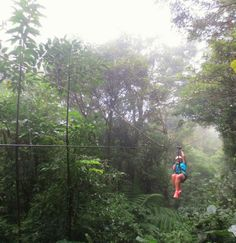 Lauren Hatch (Penn State Altoona – Letters, Arts & Sciences 2012) works with the Peace Corp in Costa Rica.  Here she takes a break from teaching children to experience zip-lining through the Monteverde Cloud Forest Reserve.