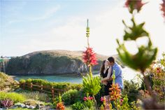 mendocino engagement pictures | Green Vintage Photography