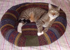 SUSSEXMOUSE Crafting, Recycling and me: How I made my cat a jumper bed Tutorial,,,,,Like this idea the best!!