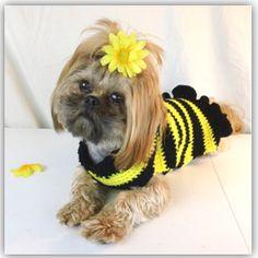 Bumble Bee Dog Sweater
