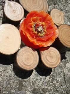 SALE Rustic Bloom Tealight Holders set of 3 by texturemix on Etsy, $25.00