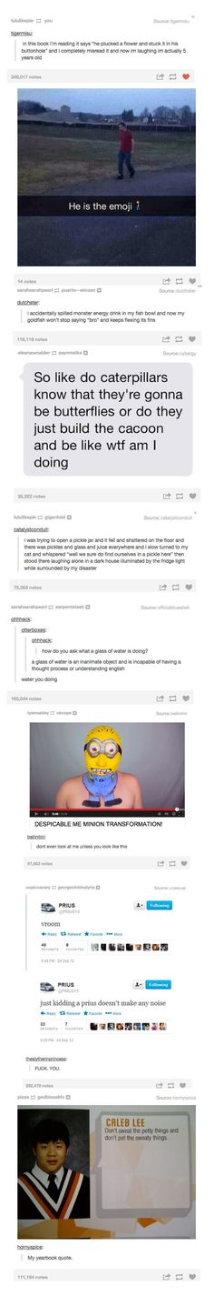 more tumblr  // funny pictures - funny photos - funny images - funny pics - funny quotes - #lol #humor #funnypictures