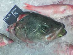 "Fish Heads - A customer at Green's Gourmet Grocery marveled at the proprietor's quick wit and intelligence.  ""Tell me, Green, what makes you s..."