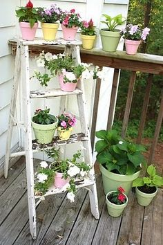Colour coordinated pots always look great grouped together but what a clever combination with a vertical ladder garden as well. | The Micro Gardener