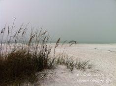 jame inspir, beach mist, beach cottages, talk faith, sea, ocean, the talk, quot, walk