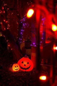 orange and purple #Halloween