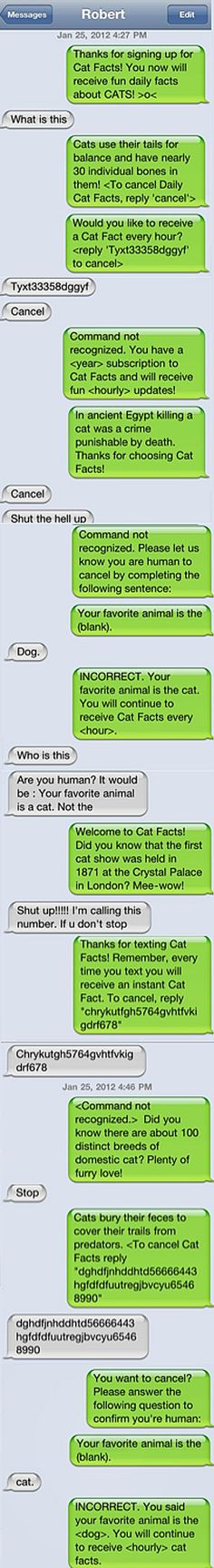 Cat Facts: Masterful Texting Prank. Haha, if only I could figure out how to do this without knowing it was me ;)