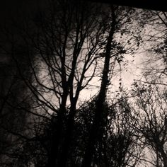 helen birch