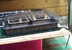 Seed trays on heat mats...part of how I start seeds (without a greenhouse Get more great information and tips about starting tomato seeds at http://www.tomatodirt.com/grow-tomatoes-from-seeds.html.