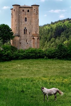 Ancient Castle, Ariege, France  photo via thefrog