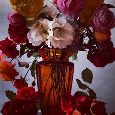 nick knight, floral, instagram, nick knight instagram feed, flowers, photography