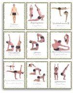 intermediate poses