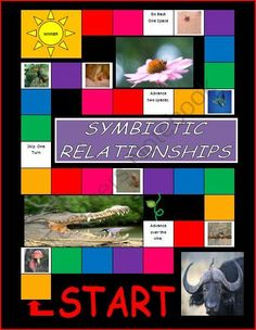 Symbiotic Relationships Board Game from Esprit de Corps Teachers on TeachersNotebook.com -  (10 pages)  - Symbiosis Board Game 32 cards (24 typed cards and 8 picture cards) 1 colorful board 1 instruction page