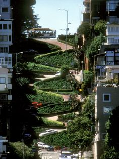 Lombard Street, San Francisco  been there. done that.