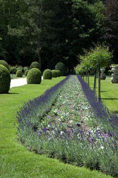 Garden of Catherine de Medici by Diana Sorela, via Flickr