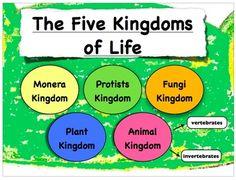 kingdoms of life. | AQA As Biology (Unit 2) | Pinterest