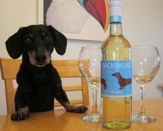 {Dachshund Riesling}  Two of my favorite things :)