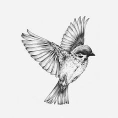 black and white bird tattoo