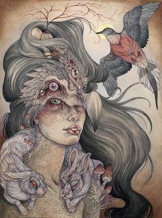 The Dodo's Widow by Caitlin Hackett