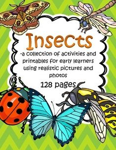 This is a a collection of activities and printables for early learners with the theme of INSECTS, using realistic graphics and photos.  128 pages.