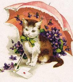 kitty, umbrella and violets