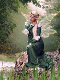 "Elves Faeries Gnomes:  #Faery ~ ""Thinking,"" by AliaChek, at deviantART."