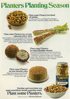 1975 Planters Appetizer Tips/Recipes