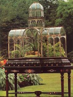 Classic terrarium housed in a Wardian case.