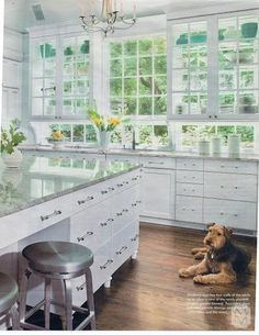 Cabinets as Windows on half a wall. Absolutely stunning. White kitchen