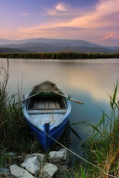 I want to be here...so peaceful