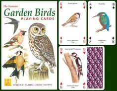 Garden Birds Playing Cards at theBIGzoo.com, a toy store that has shipped over 1.2 million items. play card, gardens, playing cards, bird play, birds, garden bird