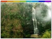 Vantawng waterfall has a picturesque surrounding dotted with bamboo grooves. The waters of the waterfall falls from a great height of 750 ft and the sight is truly awe inspiring.