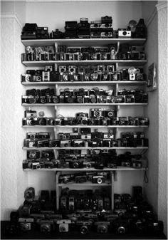 Weekend supplies. Film or Digital?