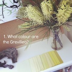Reggio activities (1) colour swatches and flowers {An Everyday Story}