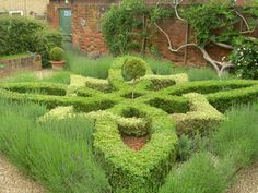 knot-gardens Jacobean style at the rear of the Hertford Museum, Hertfordshire