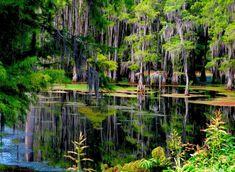 Bayou DeSaird, Monroe, Louisiana