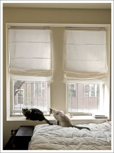 Blinds curtaining on pinterest roman blinds roman for Ready made blinds ikea