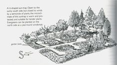 """South facing, U-shaped sun trap creates a warm microclimate.  From the book """"Gaia's Garden"""" by Toby Hemenway (something to be looked into)"""