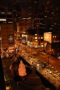 our nice little view from the Westin on North Michigan Ave.