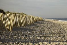 Dune Fence Sunset, the Hamptons, Long Island, New York