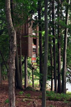 Beautiful Treehouses From Around the World (Photo Gallery, Video)