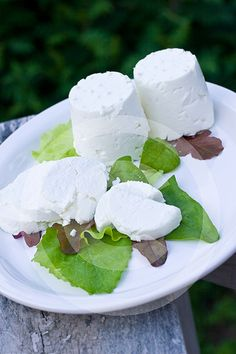 Homemade chevre - learning to make cheese - so healthy and fresh!
