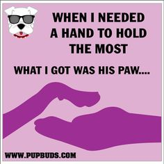 When I needed a hand to hold the most,   What I got was a Paw....    Love This?   Re-pin and pass around the SMILE! dog quot, redland poodl