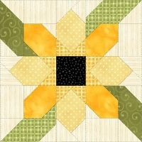 My Flower Patch Complete Set pams club has other patterns but this could be the basis of a friendship quilt
