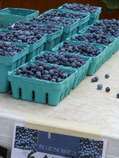 wild blueberries boo berri, wild blueberri, main style, main blueberri, maine blueberries, maine summer, main mainestyl